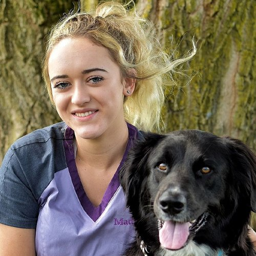 Madison P., Veterinary Assistant